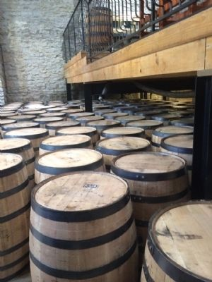 Oak barrels filling room. image. Click for full size.