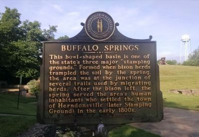 Buffalo Springs Marker [front] image. Click for full size.