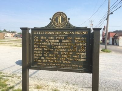 Little Mountain Indian Mound Marker (Front) image. Click for full size.