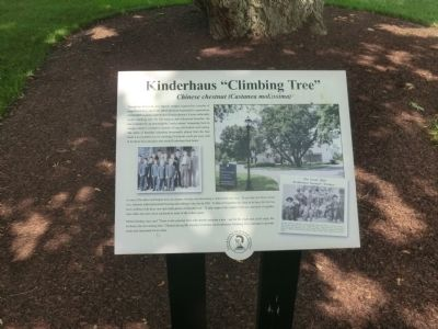 "Kinderhaus ""Climbing Tree"" Marker image. Click for full size."