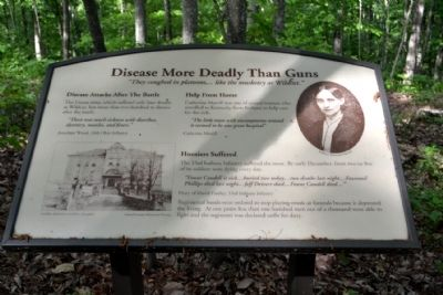 Marker #13 - Disease More Deadly Than Guns image. Click for full size.