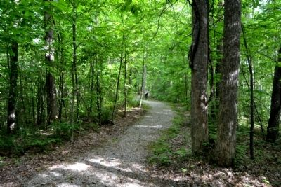 Hoosier Knob Interpretive Trail near Marker #1 image. Click for full size.