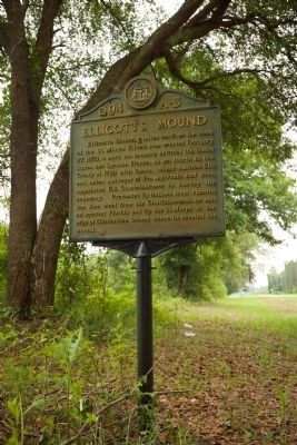 Ellicott's Mound Marker image. Click for full size.
