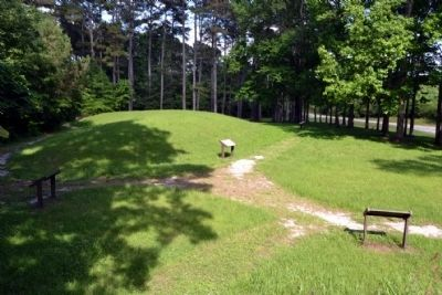 Owl Creek Mound II as viewed from top of Mound I image. Click for full size.
