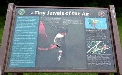 Tiny Jewels of the Air Marker image. Click for full size.