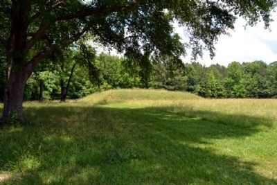 Bear Creek Mound image. Click for full size.