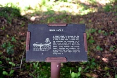 Sink Hole image. Click for full size.