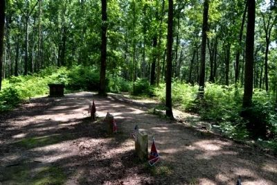 Grave Sites of 13 Unknown Confederates near Marker image. Click for full size.