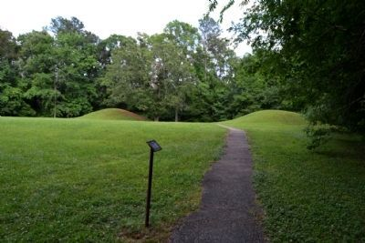 Path to Bynum Mounds image. Click for full size.