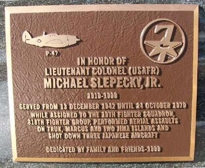 Michael Slepecky, Jr. Marker image. Click for full size.