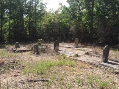 Salem Cemetery behind marker. image. Click for full size.