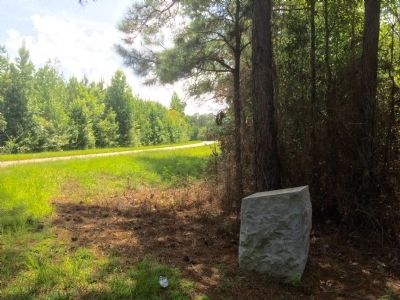 View of monument looking west on County Road 38. image. Click for full size.
