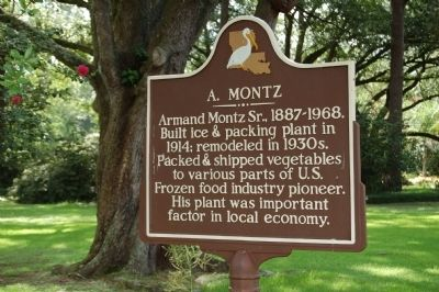 A. Montz Marker image. Click for full size.