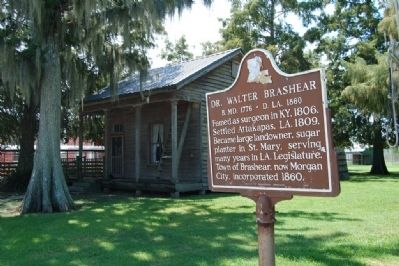 Dr. Walter Brashear Marker area image. Click for full size.