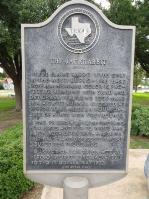 The Jackrabbit Marker image. Click for full size.