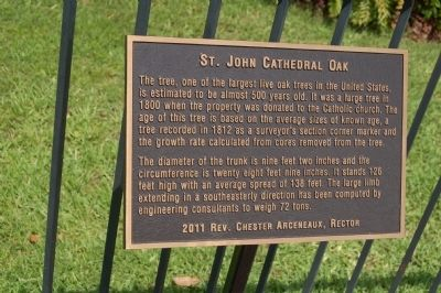 St. John Cathedral Oak Marker image. Click for full size.