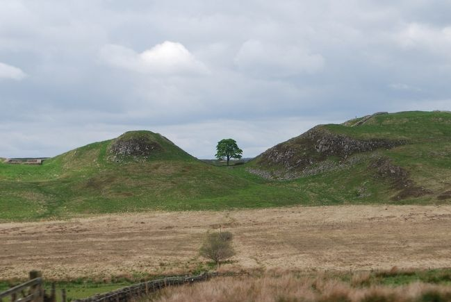 Sycamore Gap and Milecastle 39 image. Click for full size.