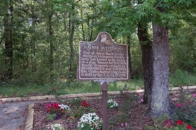 Haynes Settlement Marker image. Click for full size.