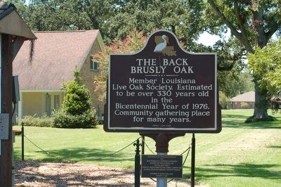 The Back Brusly Oak Marker image. Click for full size.