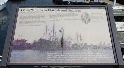 From Whales to Flatfish and Scallops Marker image. Click for full size.