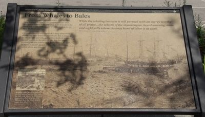 From Whales to Bales Marker image. Click for full size.