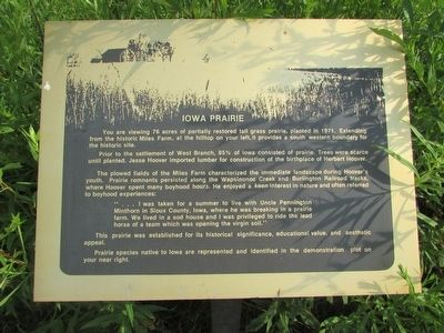 Iowa Prairie Marker image. Click for full size.