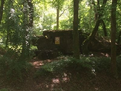 Montfaucon German Bunker image. Click for full size.