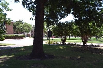 Back Side of Hardin-Simmons University Marker image. Click for full size.