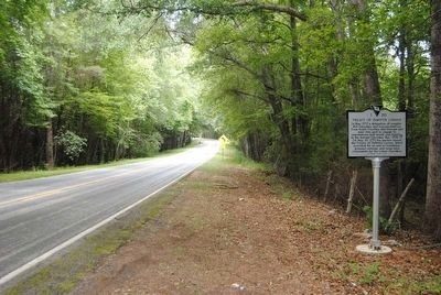 Treaty of DeWitt&#39;s Corner Marker<br>Front, Looking North Along SC 20 image. Click for full size.