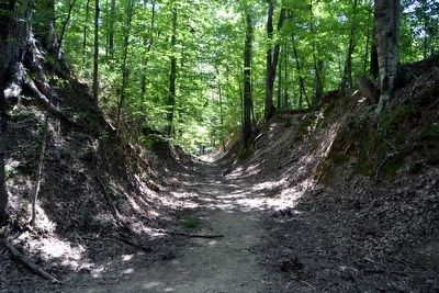 Segment of Sunken Trace near Marker image. Click for full size.