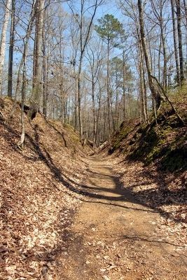 Segment of Sunken Trace<br>near Marker in Early Spring image. Click for full size.