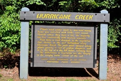 Hurricane Creek Marker image. Click for full size.