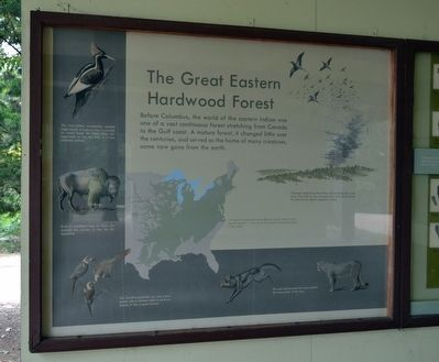 The Great Eastern Hardwood Forest Marker image. Click for full size.