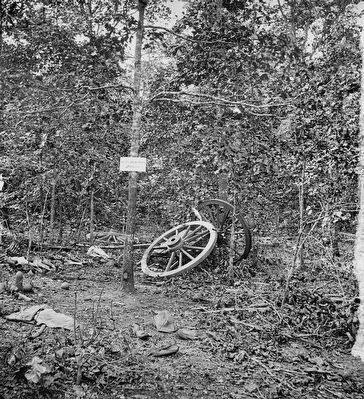 <i>Spot in woods where Gen. James B. McPherson was killed, July 22, 1864<i> image. Click for full size.