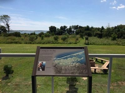 Marker at the Barrier Island Visitor Center image. Click for full size.