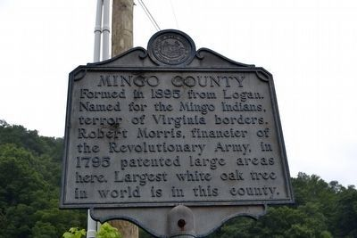 Mingo County Marker image. Click for full size.