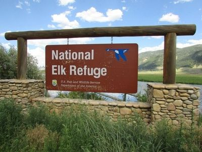 National Elk Refuge image. Click for full size.