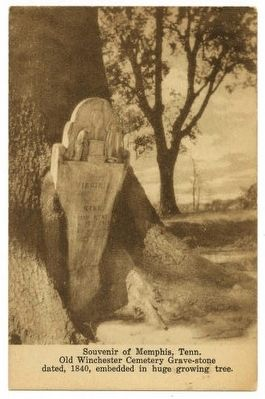 Postcard of Old Winchester Cemetery image. Click for full size.