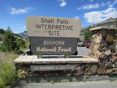 Bighorn National Forest. image. Click for full size.