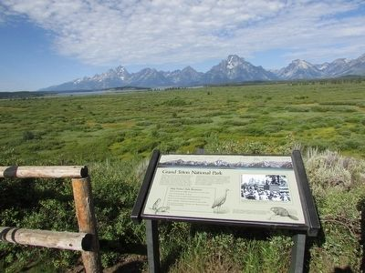 Grand Teton National Park Marker image. Click for full size.