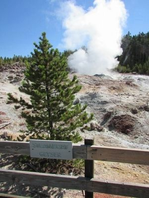 Steamboat Geyser image. Click for full size.