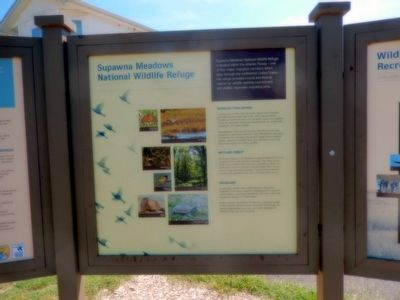 Supawna Meadows National Wildlife Refuge Marker image. Click for full size.