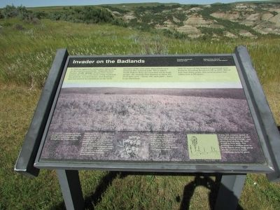 Invader on the Badlands Marker image. Click for full size.