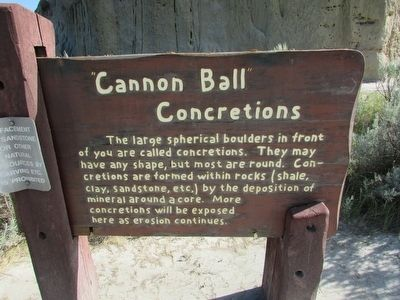 """Cannon Ball"" Concretions Marker image. Click for full size."