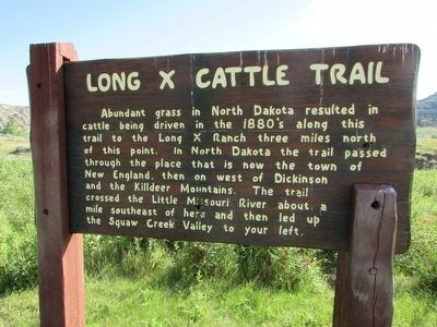 Long X Cattle Trail Marker image. Click for full size.