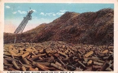 <i>A Mountain of Wood, Million Dollar Log Pile, Berlin, N.H.</i> image. Click for full size.