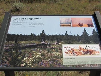 Land of Lodgepoles Marker image. Click for full size.