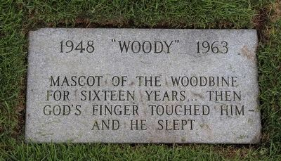 """Woody"" Memorial Stone image. Click for full size."