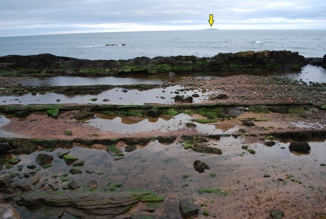 Anstruther Coast looking toward the Isle of May image. Click for full size.