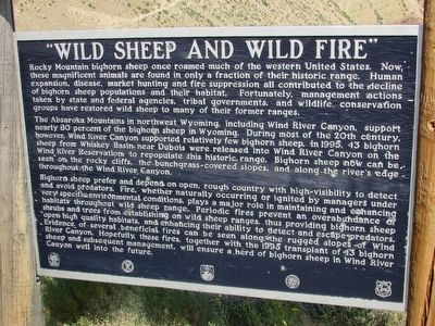 """Wild Sheep and Wild Fire"" Marker image. Click for full size."